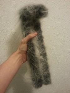Fur is on!